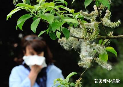 花粉过敏该如何艾灸?_花粉过敏灸哪些穴位?