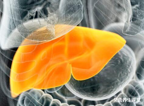 脂肪肝的艾灸疗法-艾灸这几个穴位